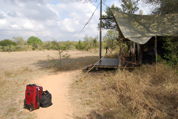 Best Safari Camps