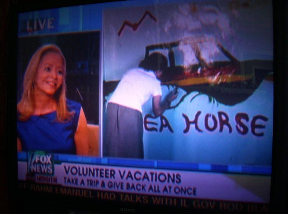 Travel Therapy on FOX News!